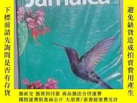 二手書博民逛書店英文原版罕見Lonely Planet Jamaica by R