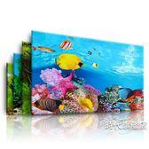 (一件免運)魚缸背景紙畫高清圖3d立體 墻高清水族箱背景畫壁畫雙面魚缸貼紙