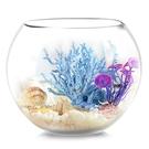 烏龜缸 魚缸生態圓形玻璃金魚缸烏龜缸桌面小型造景水培花瓶圓型小魚缸 源治良品