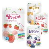 韓國 J.Holly 家禾麗 優格豆豆餅 藍莓/草莓/水梨/藍莓 豆逗餅 寶寶餅乾 0226 副食品