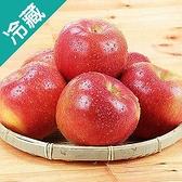 智利富士蘋果113粒/箱(150g±5%/粒)【愛買冷藏】