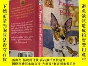 二手書博民逛書店puppies罕見in the pantry 廚房裏的小狗Y200392