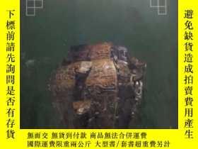 二手書博民逛書店罕見《海內外最新拍賣圖錄中國古代銅器》Y1351 邱東聯 編著