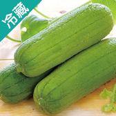 【台灣】鮮甜絲瓜1條(450g±5%/條)【愛買冷藏】