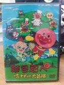 挖寶二手片-B31-132-正版DVD【麵包超人-哈比的大冒險 劇場版】-卡通動畫-國日語發音