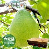 沁甜果園SSN.頂級文旦6粒裝/5台斤禮盒﹍愛食網