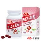 【Nutrimate你滋美得】複合B12+葉酸(90顆/瓶) x1瓶
