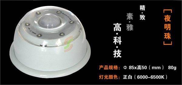 人體感應燈 中款 24CM $720