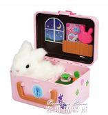 韓國玩具拉比兔 電子寵物兒童過家家玩具女孩生日禮物igo  麥琪精品屋