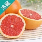 【南非】鮮活葡萄柚3粒(230g±5%/粒)【愛買冷藏】