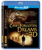 荷索之3D祕境夢遊 藍光BD (音樂影片購)