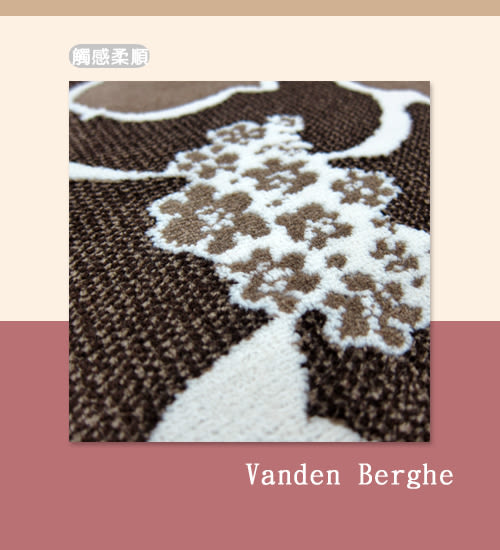 范登伯格 圓舞曲 花花世界絲質地毯-200x280cm