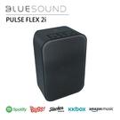 【結帳再折+24期0利率】BLUESOUND PULSE FLEX 2i 無線串流音樂播放器 FLEX-2i