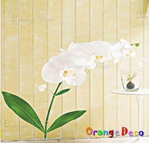 壁貼【橘果設計】 DIY組合壁貼/牆貼/壁紙/客廳臥室浴室幼稚園室內設計裝潢