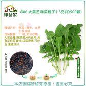 【綠藝家】A86.大葉芝麻菜種子1.3克(約500顆)