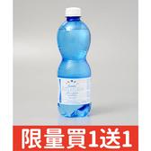 義大利【亞莉佳】氣泡礦泉水 500ml(賞味期限:2020.06.27)