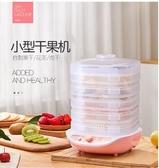 乾果機金正干果機家用食品烘干機水果蔬菜寵物肉類食物脫水風干機小型 BASIC HOME LX