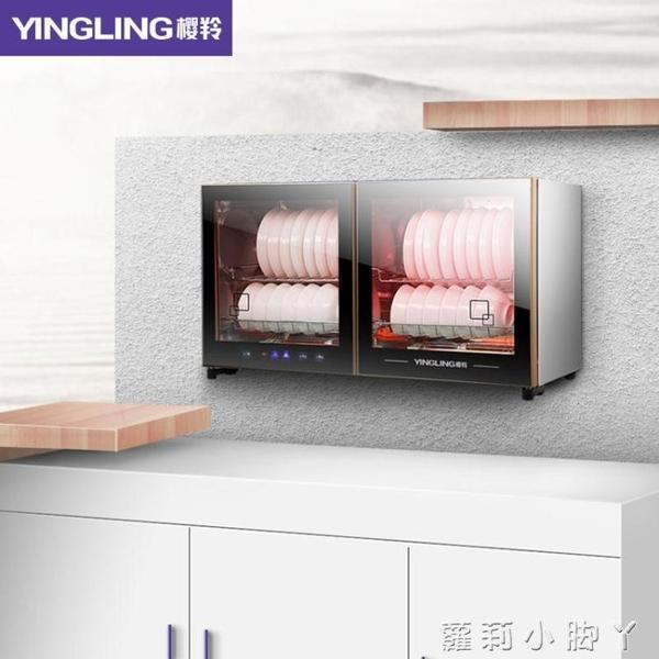 消毒櫃壁掛式家用立式臥式台式雙門商用餐具碗櫃 220v NMS蘿莉小腳ㄚ