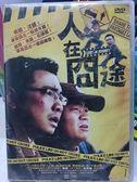 影音專賣店-F05-015-正版DVD*港片【人在囧途】-徐崢*王寶強*李小璐