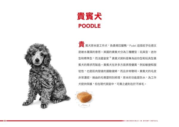 *KING WANG*法國皇家 PDA貴賓成犬專用飼料(原PRP30)-3kg