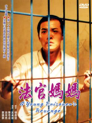 法官媽媽DVD 奚美娟/陳思成