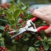 不銹鋼園藝剪刀果樹修剪器多功能摘水果花木剪鮮花樹杈花枝修剪器