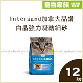 寵物家族-【免運】Intersand 加拿大晶鑽Classic白晶強力凝結細砂12kg
