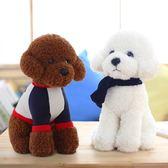 小型泰迪毛毛狗車上玩偶小號公仔車載布娃娃女生毛絨玩具【限時八五折】