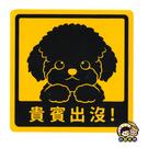 【收藏天地】萌犬出沒*NEW寶貝貼-貴賓 /  文創  家飾 居家 環保 貼紙