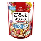 【KP】日本 日清 早餐麥片 五種彩色果實 早餐 水果 綜合穀物 燕麥 360g 日本製造進口 490162016159