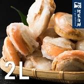 【阿家海鮮】特大帆立貝1Kg±10%/包 (約16-20顆)-2L規格