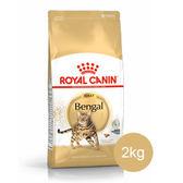 【寵物王國】法國皇家-BG40豹貓專用飼料2kg