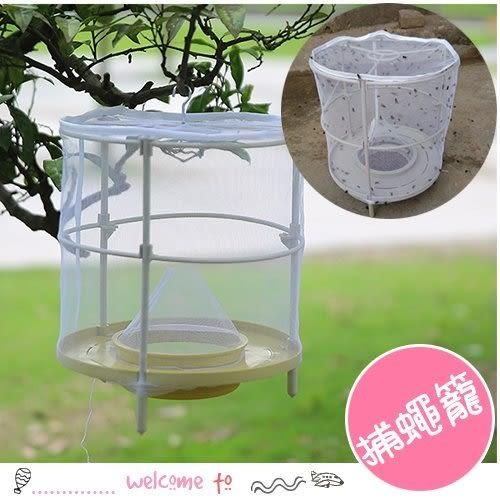 戶外自動捕蠅捕蚊籠 可重複使用