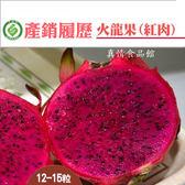 產銷履歷陳家火龍果-紅肉10台斤/箱 (中果)