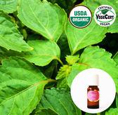 有機精油10ml-廣藿香 Patchouli Organic Essential Oil ~ 美國USDA有機認證