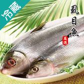 虱目魚1尾(500~600g/尾)【愛買冷藏】
