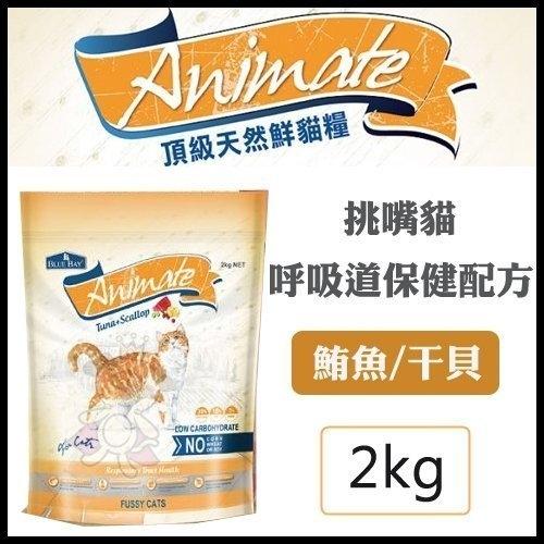 *KING WANG*BLUB BAY倍力 Animate天然貓鮮糧飼料 挑嘴貓/呼吸道保健 2KG