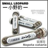 *WANG*Small Leopard小野豹 貓薄荷45ML