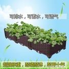 家庭環保蔬菜種植箱 特大陽台種菜盆 長方形塑料花箱種花盆 樹盆 樂活生活館