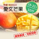 【高級出口品質】 屏東枋山愛文芒果10斤(18-22顆)