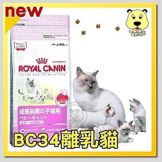 【ZOO寵物樂園】法國皇家Baby BC34《離乳貓》飼料 - 2kg