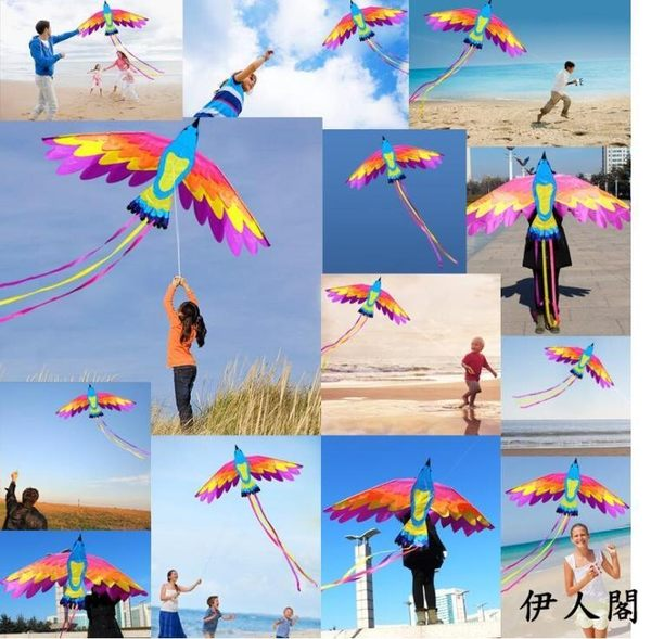 鳳凰風箏七彩鳳凰風箏成人兒童大型風箏