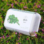 【青菜笠】雞蛋環保植栽盒-羅勒