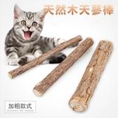 木天蓼二入 貓咪磨牙潔齒棒 貓零食 天然貓薄荷 貓玩具