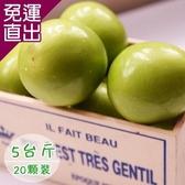 饗果樂 燕巢牛奶蜜棗約(5台斤/20粒) E09400018【免運直出】