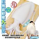 【海肉管家-全省免運】鮮嫩活凍3XL巨無霸花枝(1.5Kg/隻)