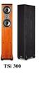 《名展影音》 套裝 5.1 喇叭組合 TSi 300 + CS 10 +PSW 110 買就送sony s190