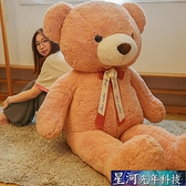 公仔玩偶 大熊泰迪熊貓毛絨玩具公仔布娃娃大號睡覺抱枕玩偶女孩可愛抱抱熊 星河光年