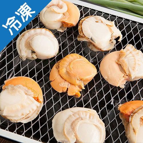 【超大顆】日本直送熟凍帆立貝1盒(500g±5%/盒)【愛買冷凍】