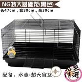 籠子 水壺/食盆 倉鼠籠子基礎籠超大47相親基雙鼠【君來佳選】